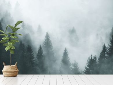 Fantasy foggy forest in the morning fog. Picture was taken in Slovenia, EU.