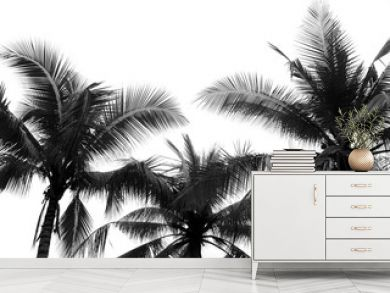 Coconut palm tree silhouette