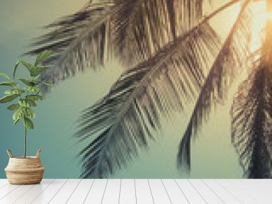 Top of palm tree with sun behind
