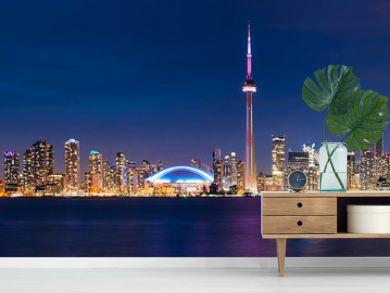 Toronto Cityscape Night