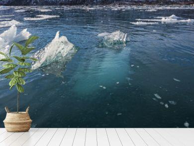 Most of the Iceberg is Underwater