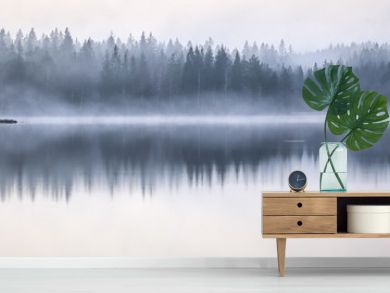 Panoramic shot of the sea reflecting the trees on the shore with a foggy background