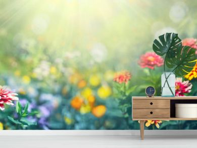 Colorful beautiful multicolored flowers Zínnia spring summer in Sunny garden in sunlight on nature outdoors. Ultra wide banner format.